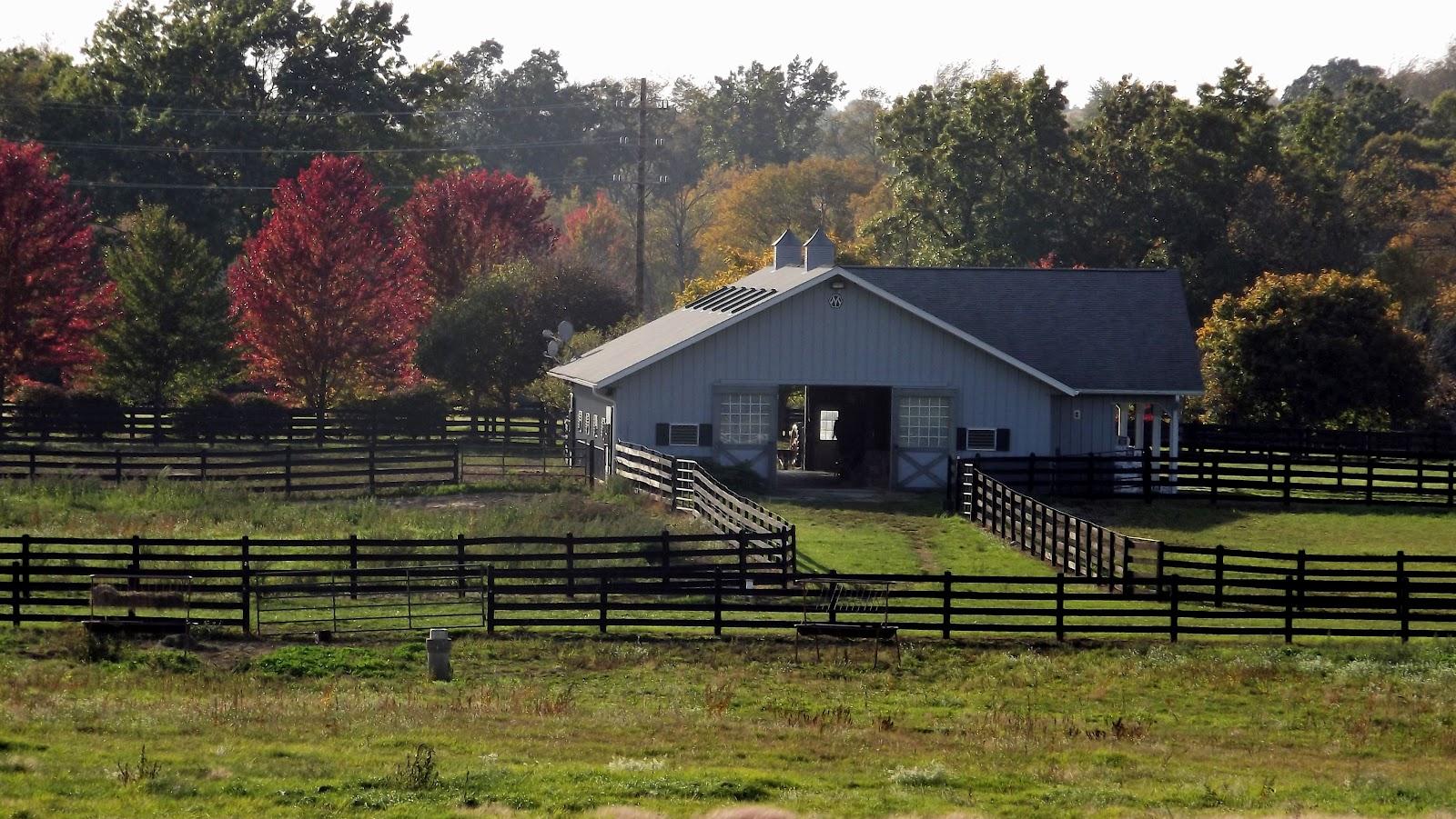 Southern michigan horse farm fall colors for Horse farm