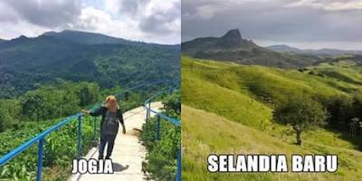 Selandia Baru Vs Yogyakarta