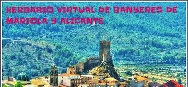 Enllaç: HERBARI VIRTUAL DE BANYERES DE MARIOLA I ALACANT