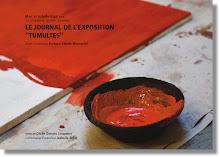 """le journal de l'exposition """"Tumultes""""."""