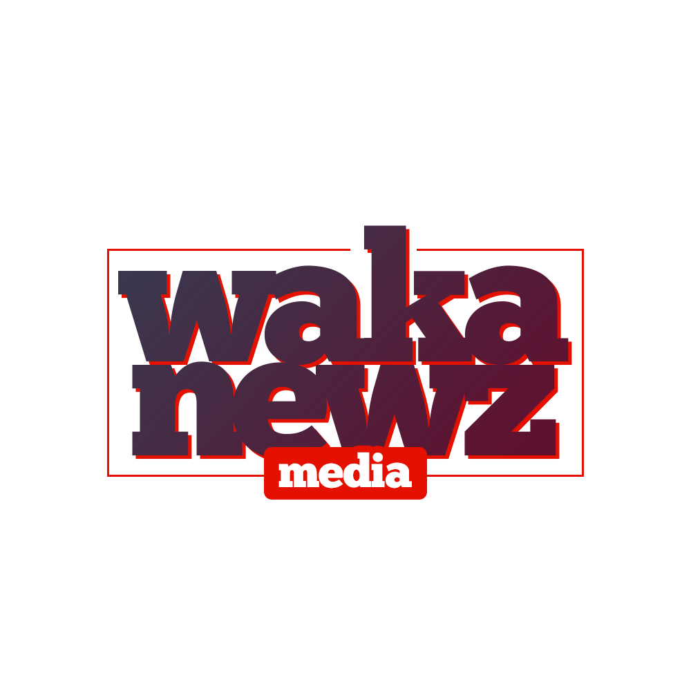 Wakanewz  || Home Of Unique Entertainment