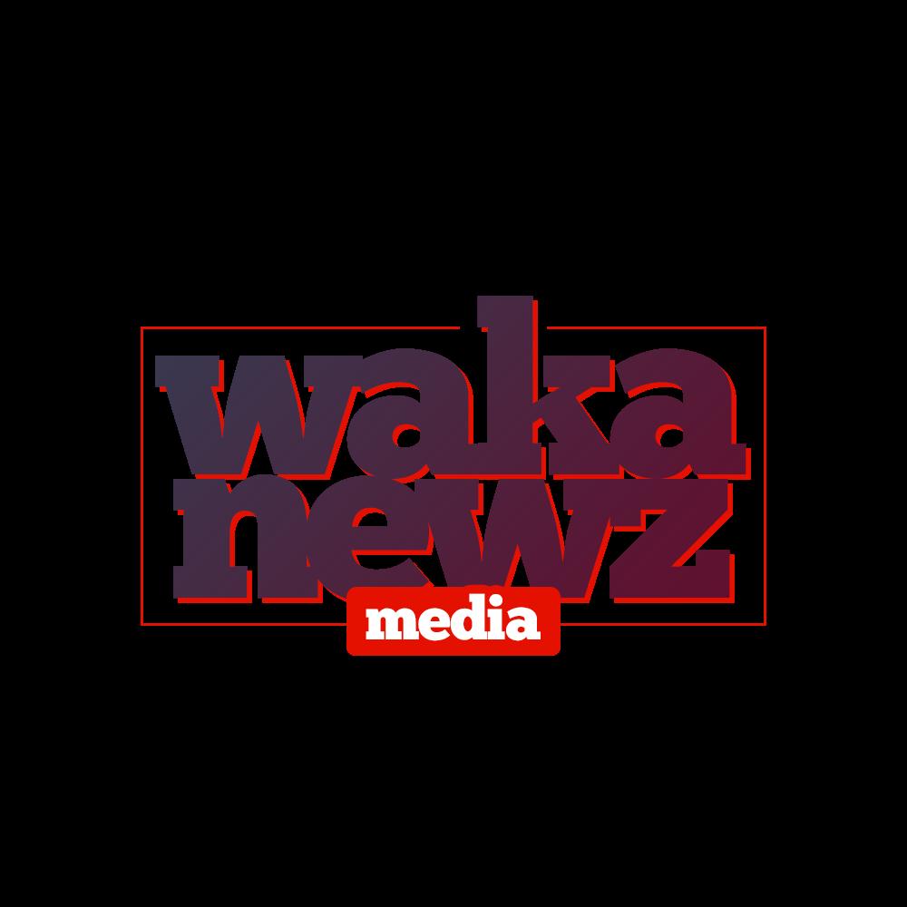 Wakanewz  || Home Of Unique Entertainment