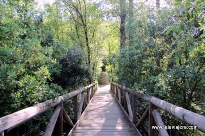 Parque Natural Sierra de Hornachuelos, Cordoba
