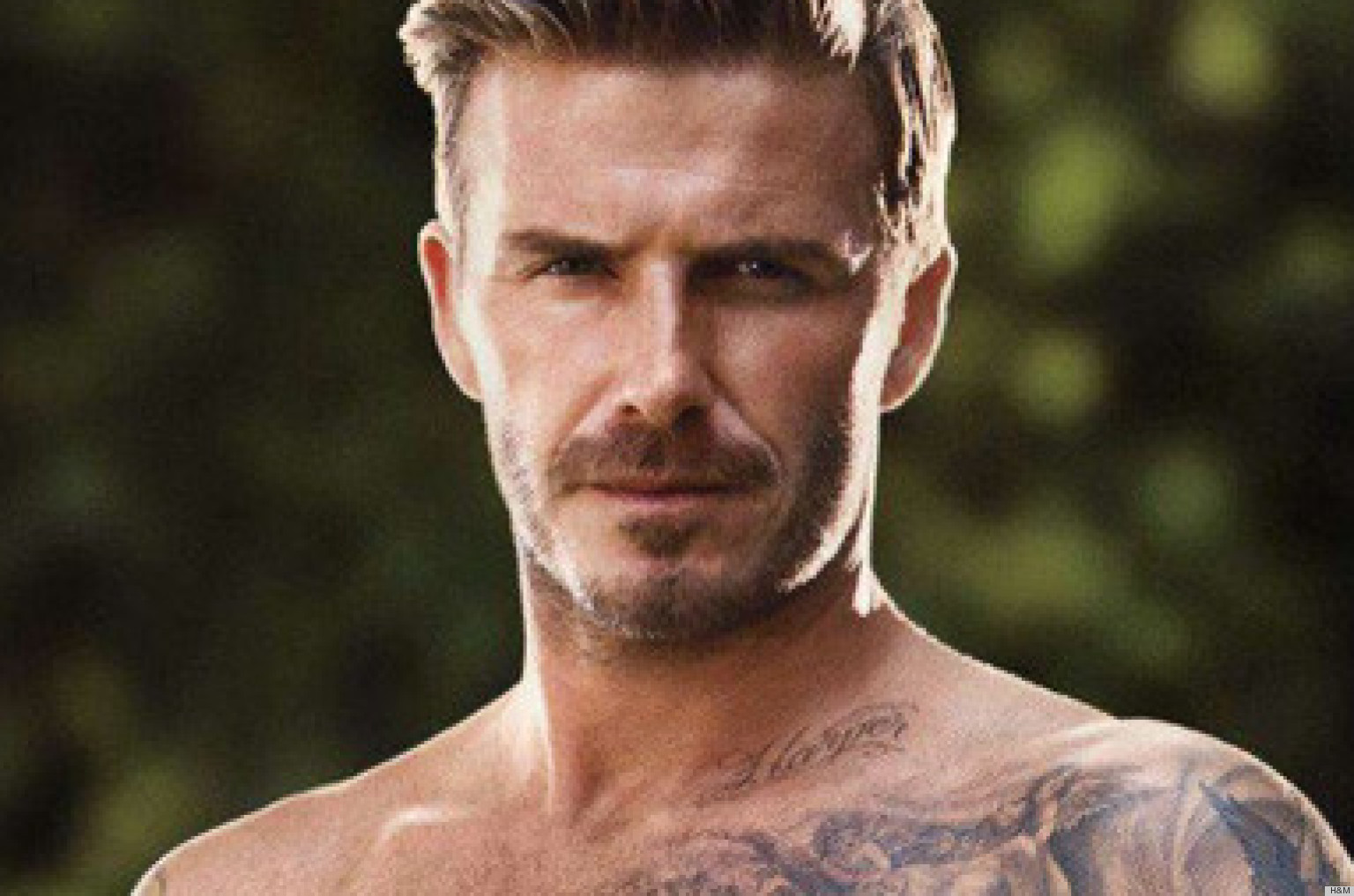 David Beckham 2013 WallpapersDavid Beckham