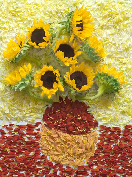 Fong Qi Wei flores pinturas recriadas