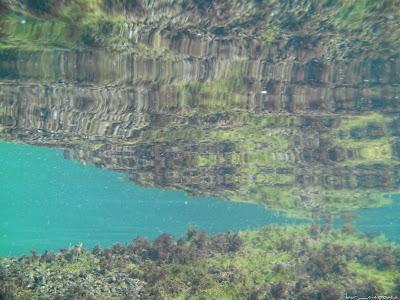 Marea Neagra Black Sea underwater images poze subacvatice