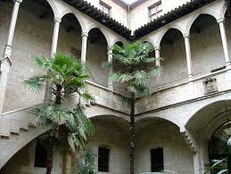 IEI Lleida