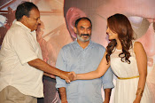 Jil movie success meet-thumbnail-6