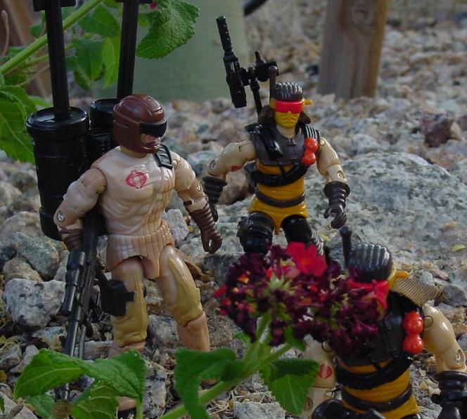 2006 Operation Flaming Moth Flak Viper, V3, Master Collector Exclusive, Club, 1991 Desert Scorpion