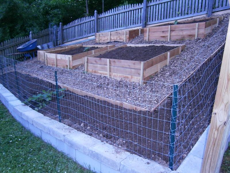 Flour Sack Mama: Built Family Garden with Raised Beds