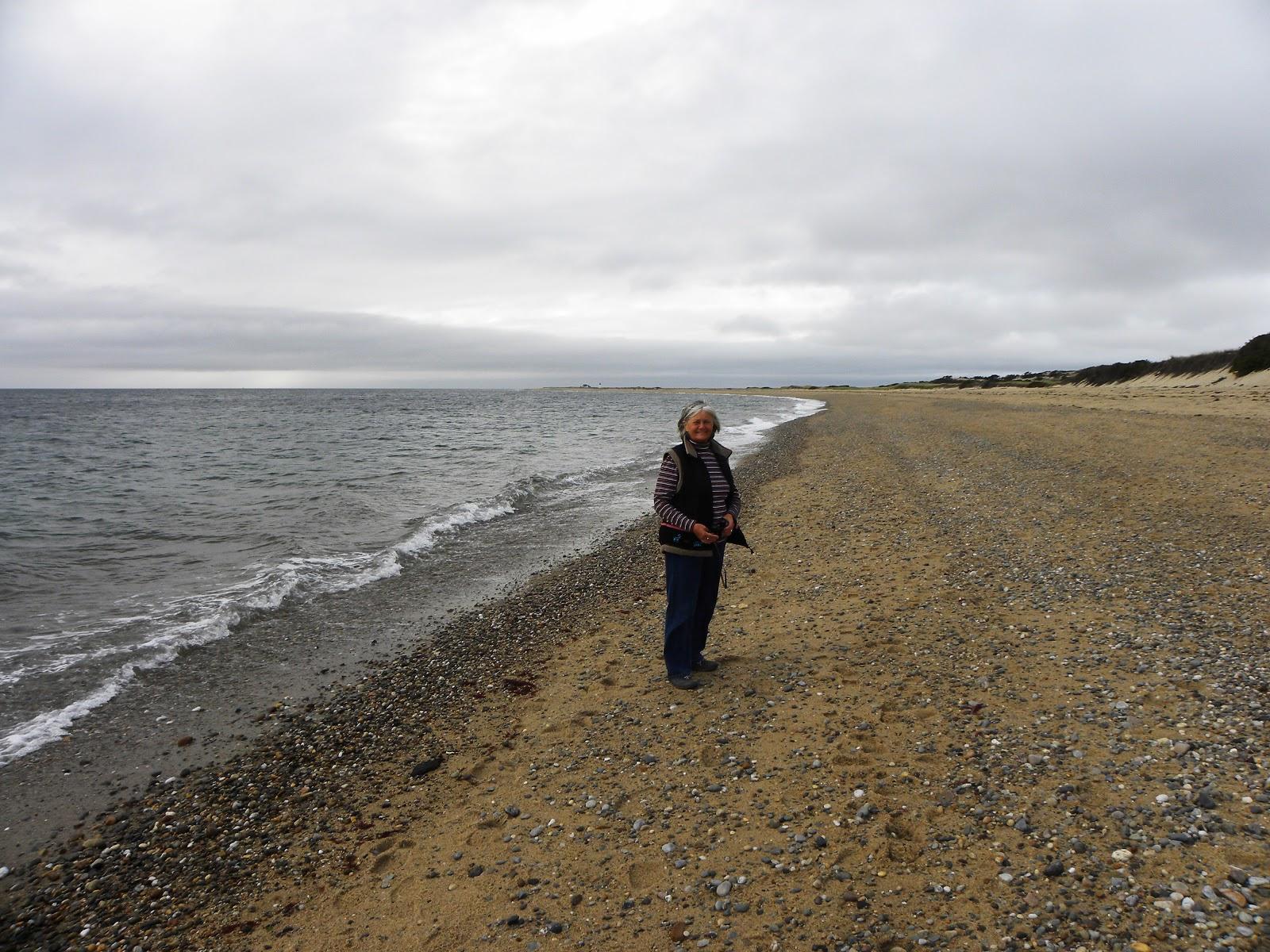 2015 travels pilgrims wampanoag cape cod for Cove cape cod