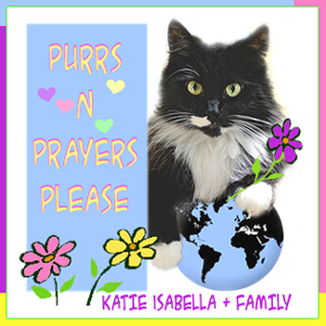 Purring for Katie Isabella and Family