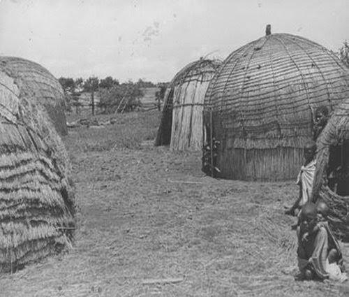 Zulu huts picture 2
