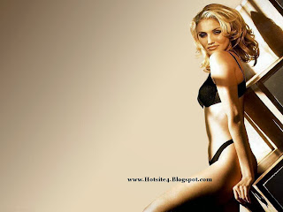 Cameron Diaz Sexy Full Size Wallpapers Free Download Cameron Diaz 2014 Sexy Bikini Wallpapers Cameron Diaz In Bikini 2015 HD Wallpapers