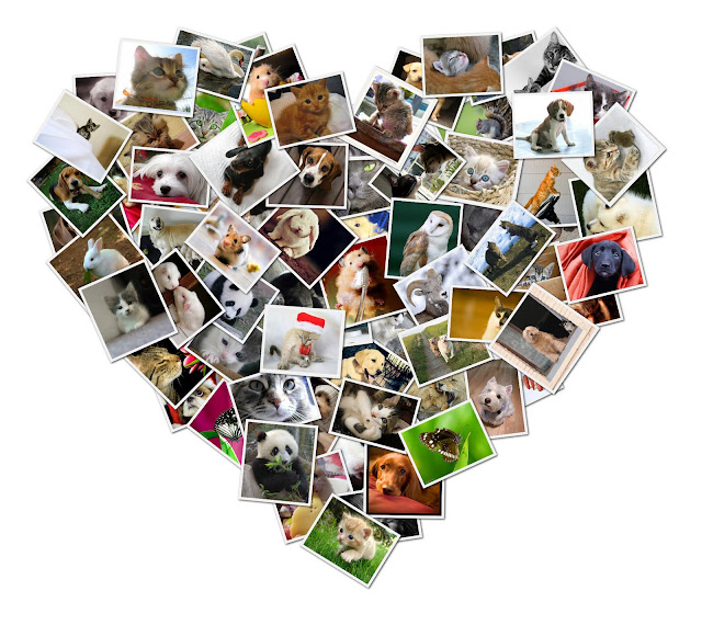 Collage Corazon