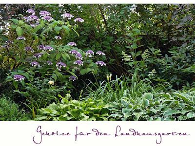 Gartenplanung, Gartendesign und Gartengestaltung: Landhausgarten ...