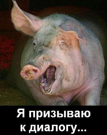 Необходимо срочно созвать контактную группу по Донбассу, - МИД РФ - Цензор.НЕТ 6850