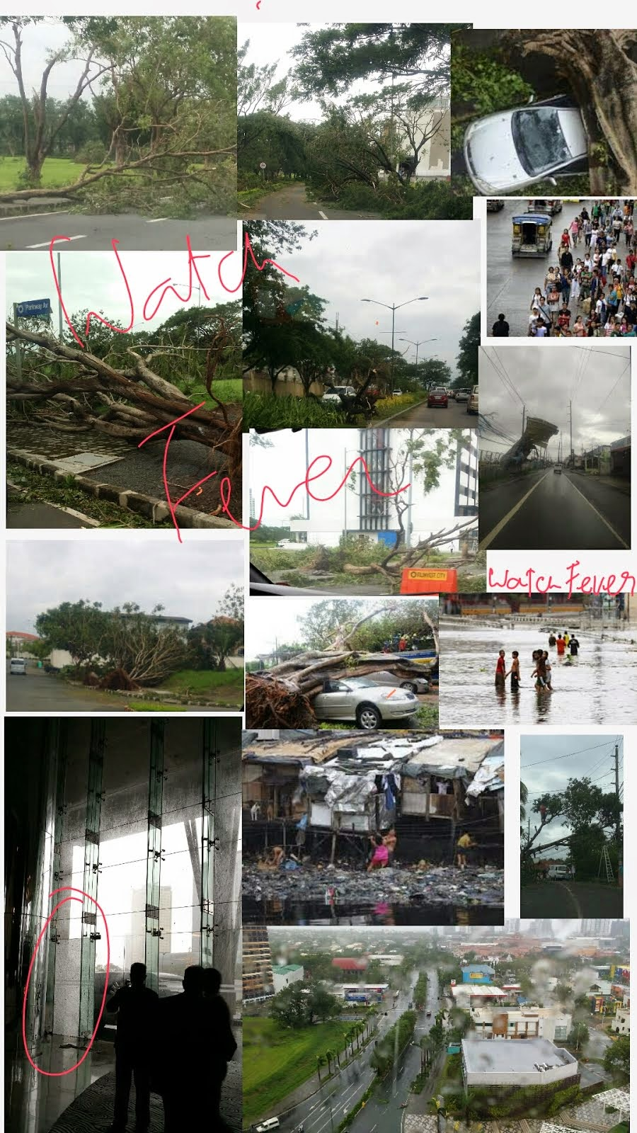 terrible Experience of such Kind of Typhoon on 16 July in Manila