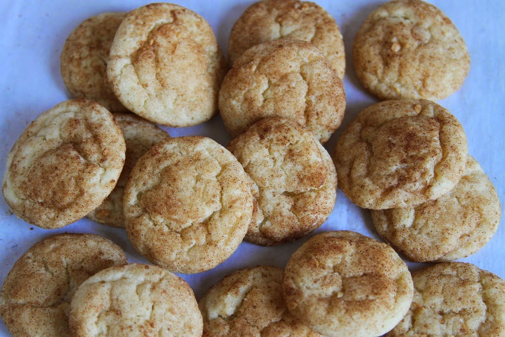 DAYDREAMEL: Mrs. Sigg's Snickerdoodles