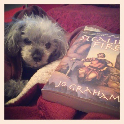 Murchie sits tucked beneath a comforter and a red blanket so only his face and his front paws are visible. He faces the viewer head on and looks distinctly sleepy and annoyed, though his ears are perked. Beside him sits a trade paperback copy of Stealing Fire. Its cover shows a pale-skinned man seated on a pile of stones. He wears ancient armour--a leather kilt and tunic--and rests his wrist atop a sword. His eyes are closed.