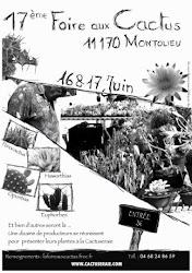 Montolieu 2012