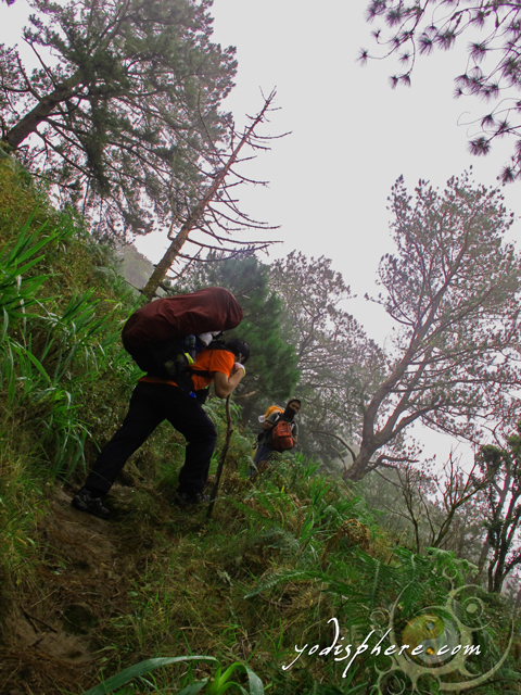 Steep portion of the Akiki Trail. A mountaineer trekking the Akiki trail