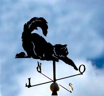 """CATA-VENTO """"Gato e rato"""""""