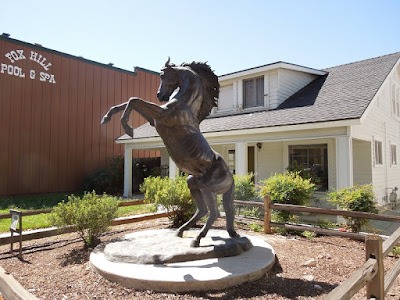 """Veritas"" Horse Statue in Front of Rossi Law Office, Paso Robles, © B. Radisavljevic"