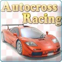 Autocross Racing