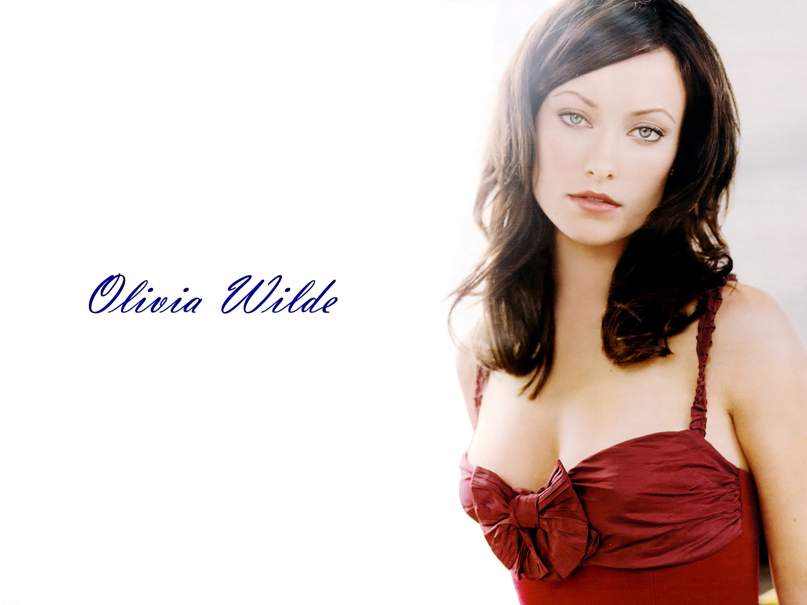 angelina jolie hd hot wallpapers 2013: olivia wilde lovely new hd