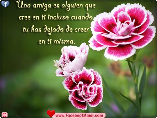 Frases bonitas de Amistad - Imágenes Bonitas para Facebook Amor y ...
