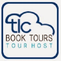 http://tlcbooktours.com/2014/07/stephanie-feldman-author-of-the-angel-of-losses-on-tour-julyaugust-2014/