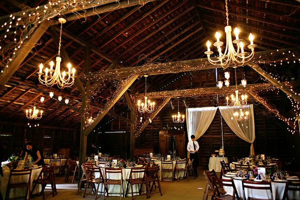 Goldie Design Wedding Decor FeverLighting