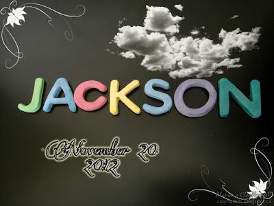 Jackson November 20 2012