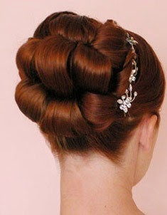 Sleek Updos Hairstyle