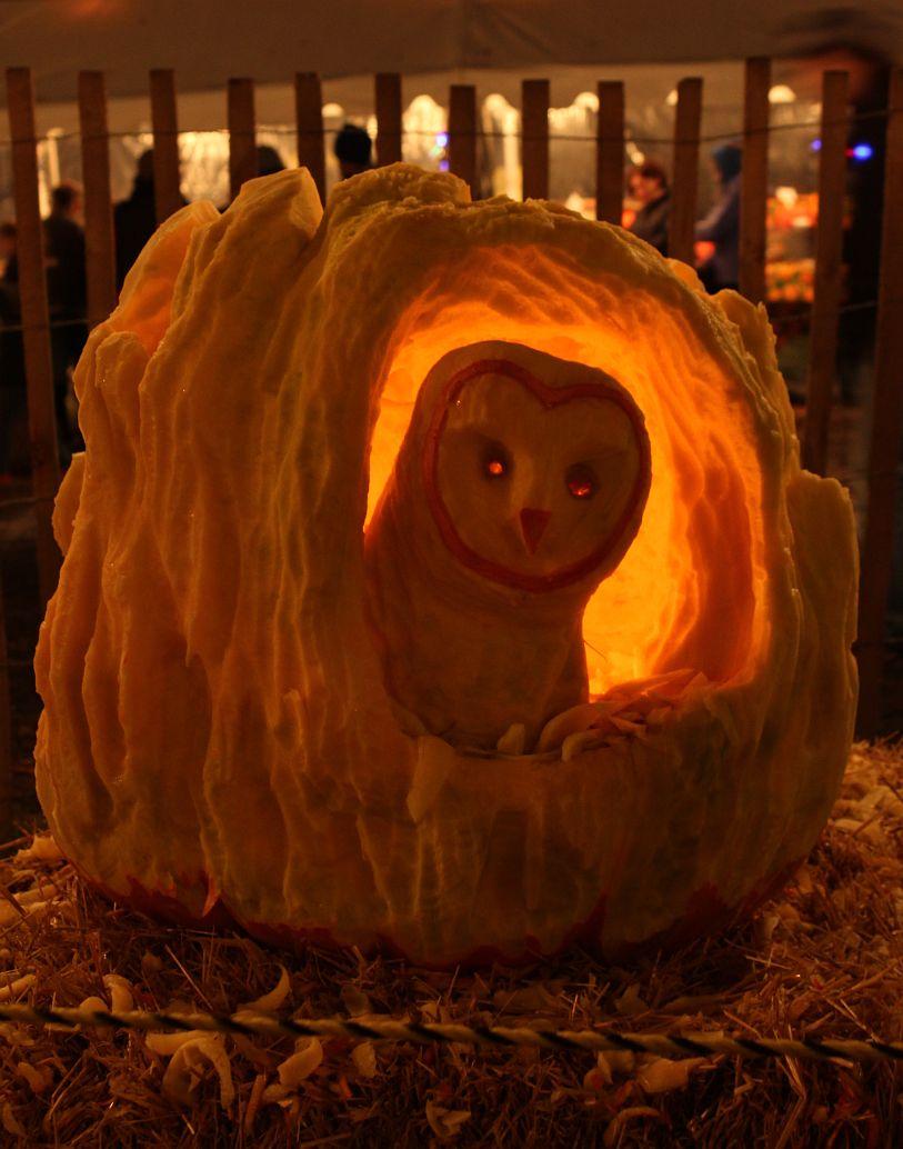 The Mare S Tales Gypsy Mare Studios Great Pumpkin Carve