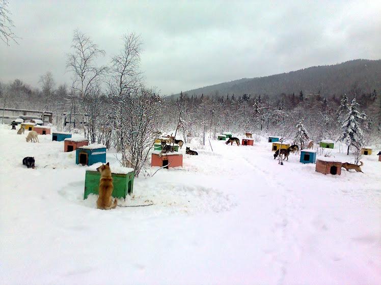 Зима вернулась - на дворе 29 апреля