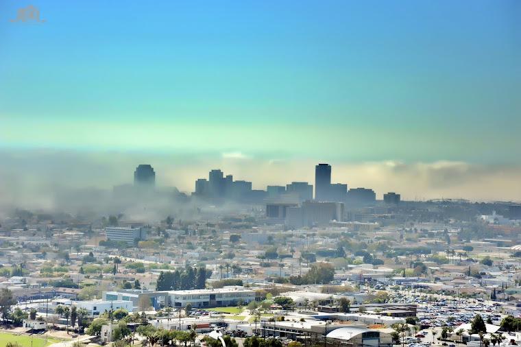 Long Beach Downtown Landscape