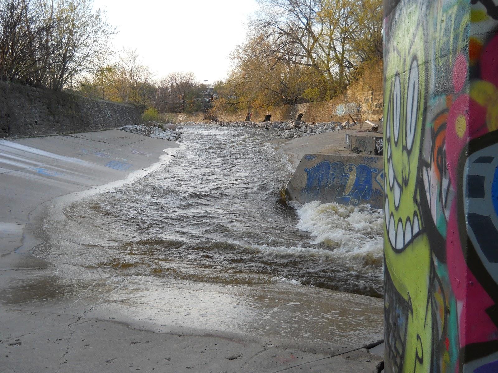 What the karp restoration progress on milwaukee 39 s for Milwaukee river fishing