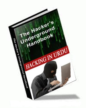ethical hacking book in urdu