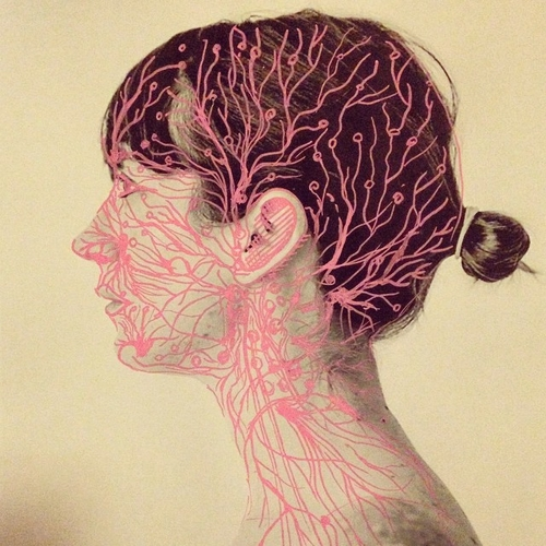 15-Scheme-Juana-Gómez-Embroidered-Anatomy-exposing-Internal-Physiology-www-designstack-co