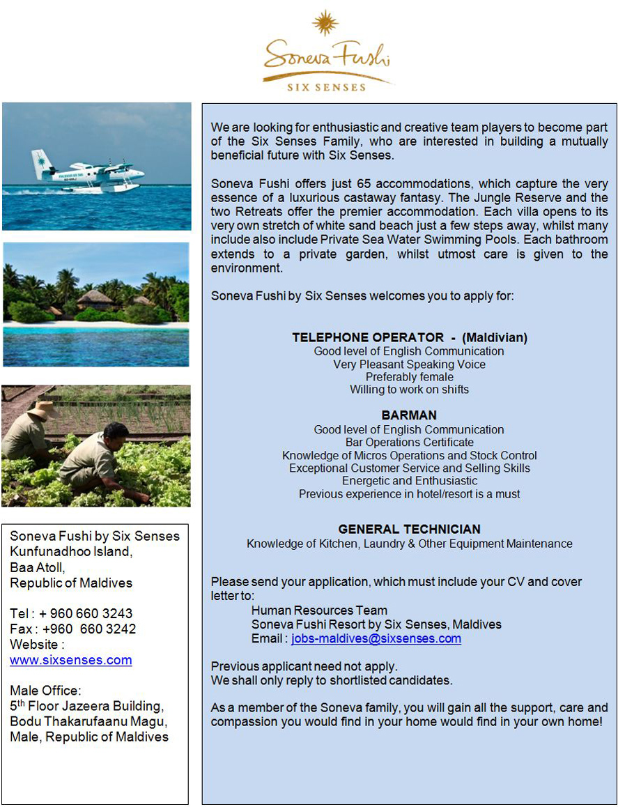 job job opening for barman olhuveli beach spa resort