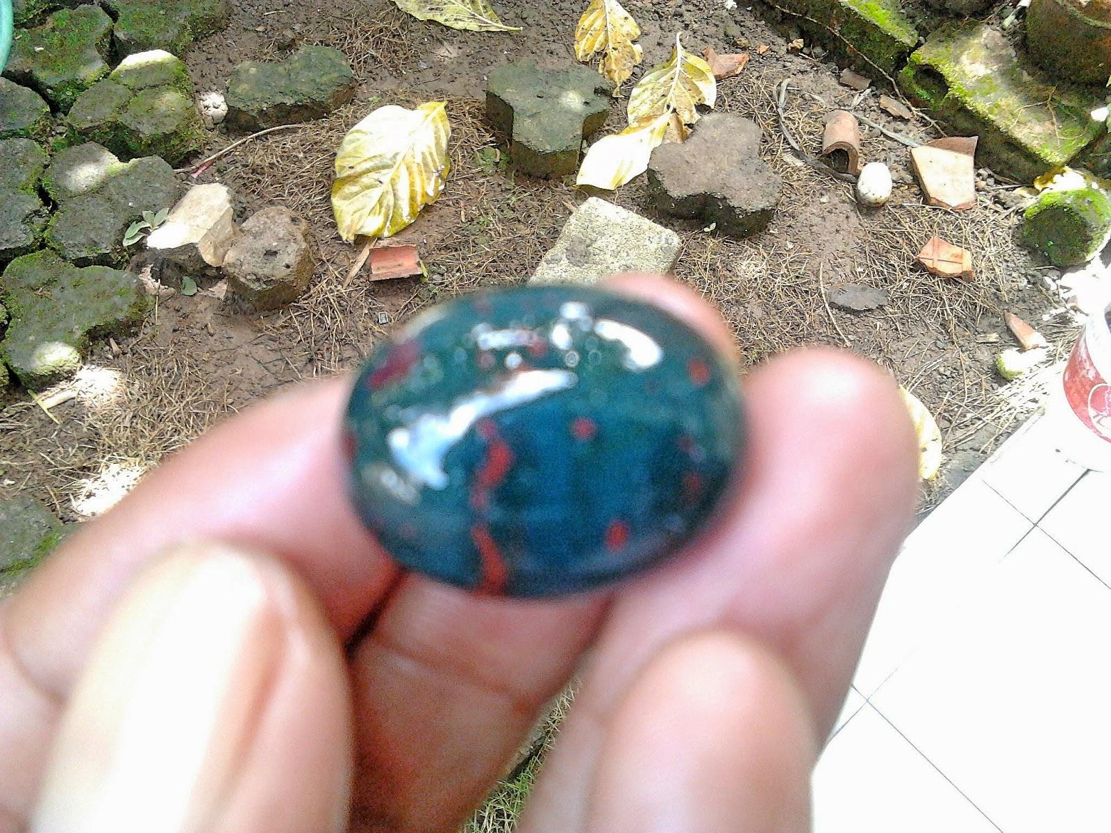 Jual Batu Akik Nogo Sui terbaru 2015