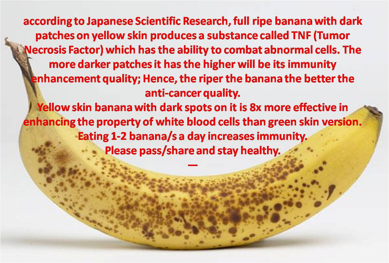 banana research A banana is the common name for a type of fruit and also the name for the herbaceous plants that grow it these plants belong to the genus musa  they are native to the tropical region of.
