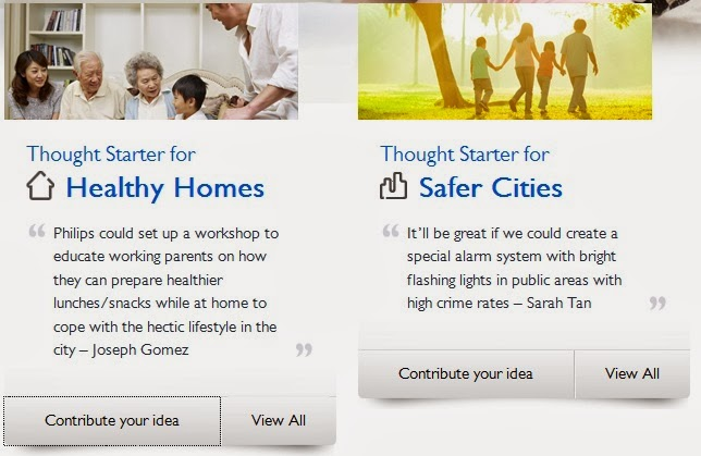 The two themes (Healthy Homes and Safer Cities)