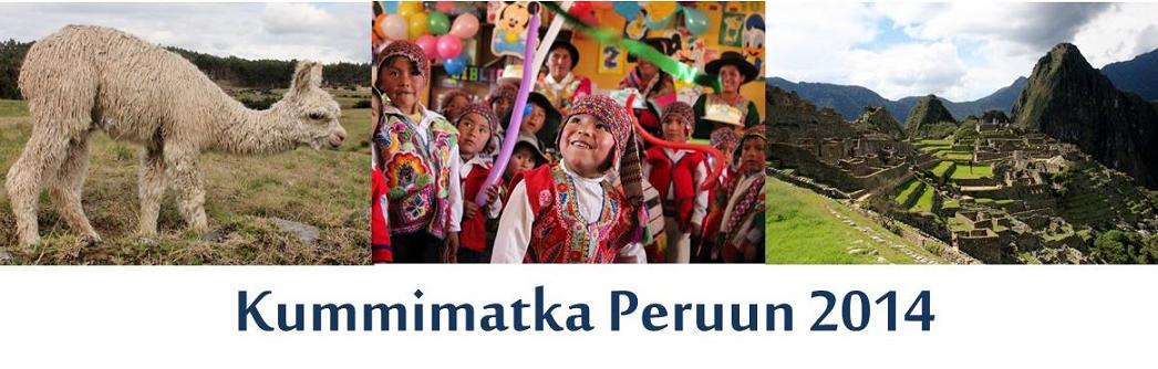 Kummimatka Peruun 2014