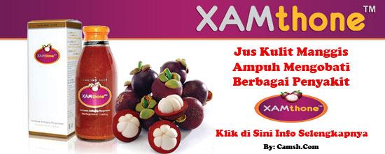 Kulit Manggis Xamthone