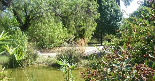 Jardines que me gustan arboreto las posibilidades de las - Disenar jardin online ...
