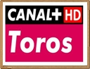 ver canal plus toros en directo online gratis 24h por internet
