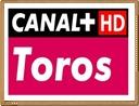 canal plus toros en directo gratis por internet